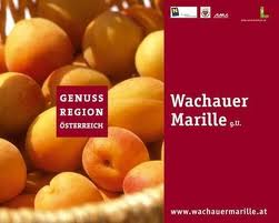 Genuss Region Wachauer Marille